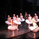 The Swan Maidens