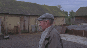 """A scene from """"Vasily."""" Vasily gets reacquainted with his home after his big trip."""