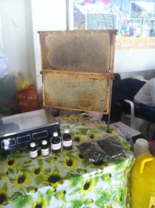 Honey bee technology for the win!