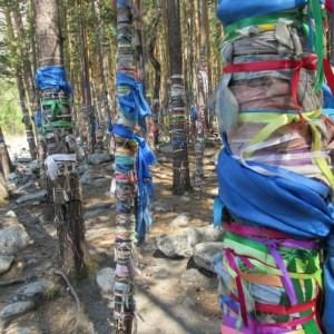 Tying cloth to trees is a tradition shared by local Shamans and Buddhists