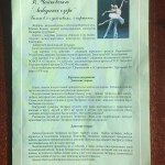 Swan Lake program with an act-by-act synopsis